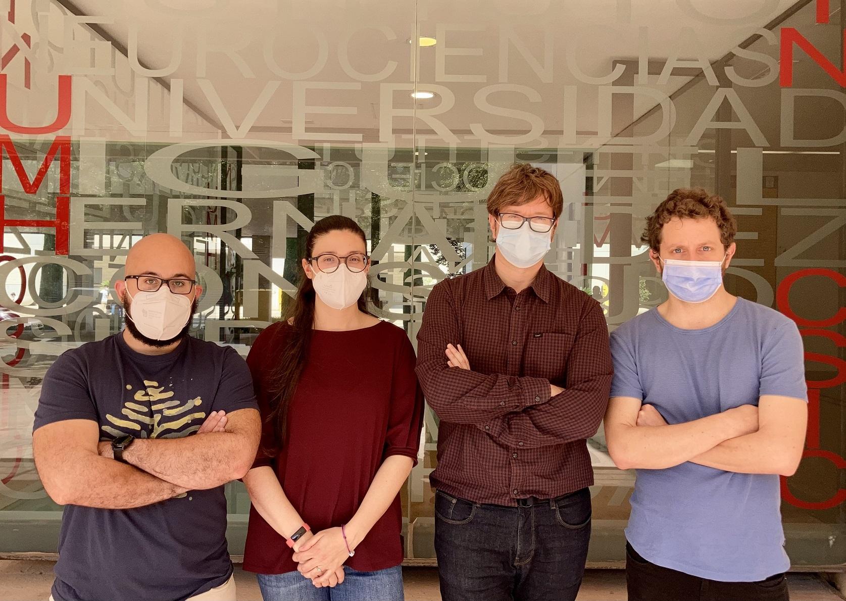 Javier Alegre, María Sáez, Ramón Reig y Roberto Montanari, investigadores del Instituto de NeurocienciaS