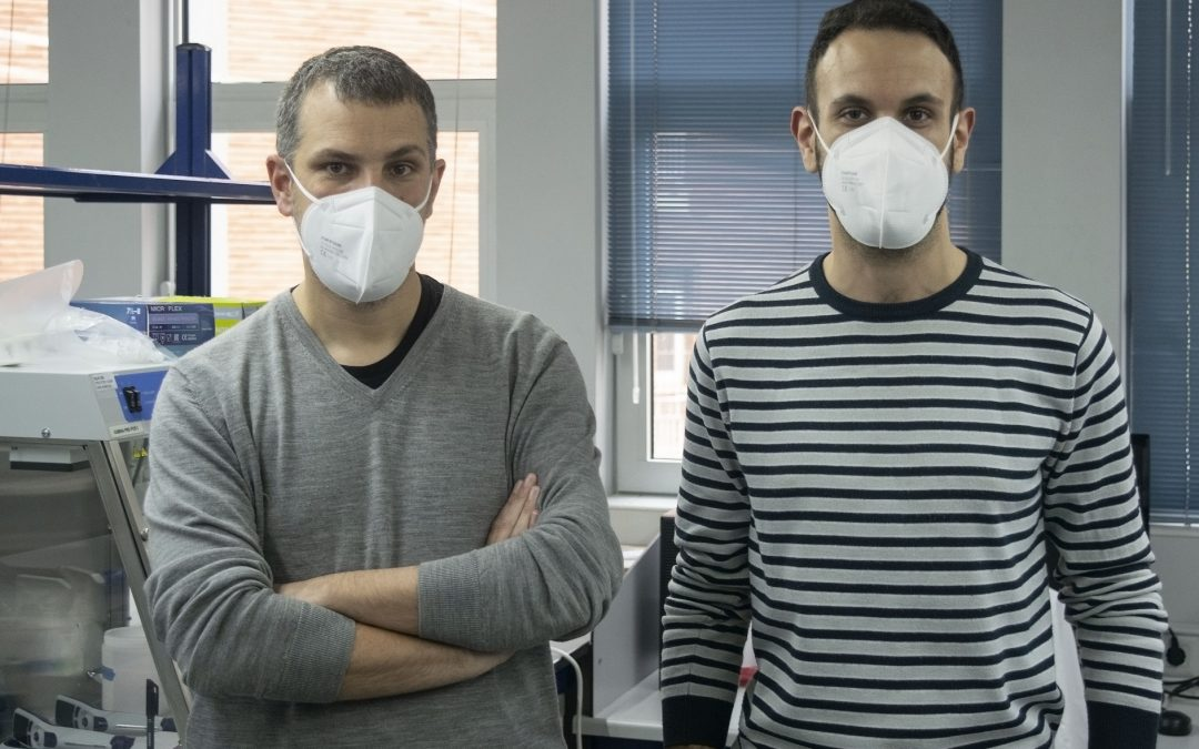 Un estudio del CSIC revela que las infecciones múltiples son comunes en tuberculosis multirresistente